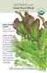 Lettuce Leaf Saladbowl Bl Organic Organic Heirloom