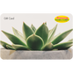 Digital Potted Succulent eGift Card