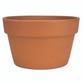 Glazed Ceramic Terra Cotta Fern Azalea Pot - 10.5 inch