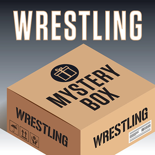 Men's Wrestling 3-Piece Tee Mystery Box - Multi Color