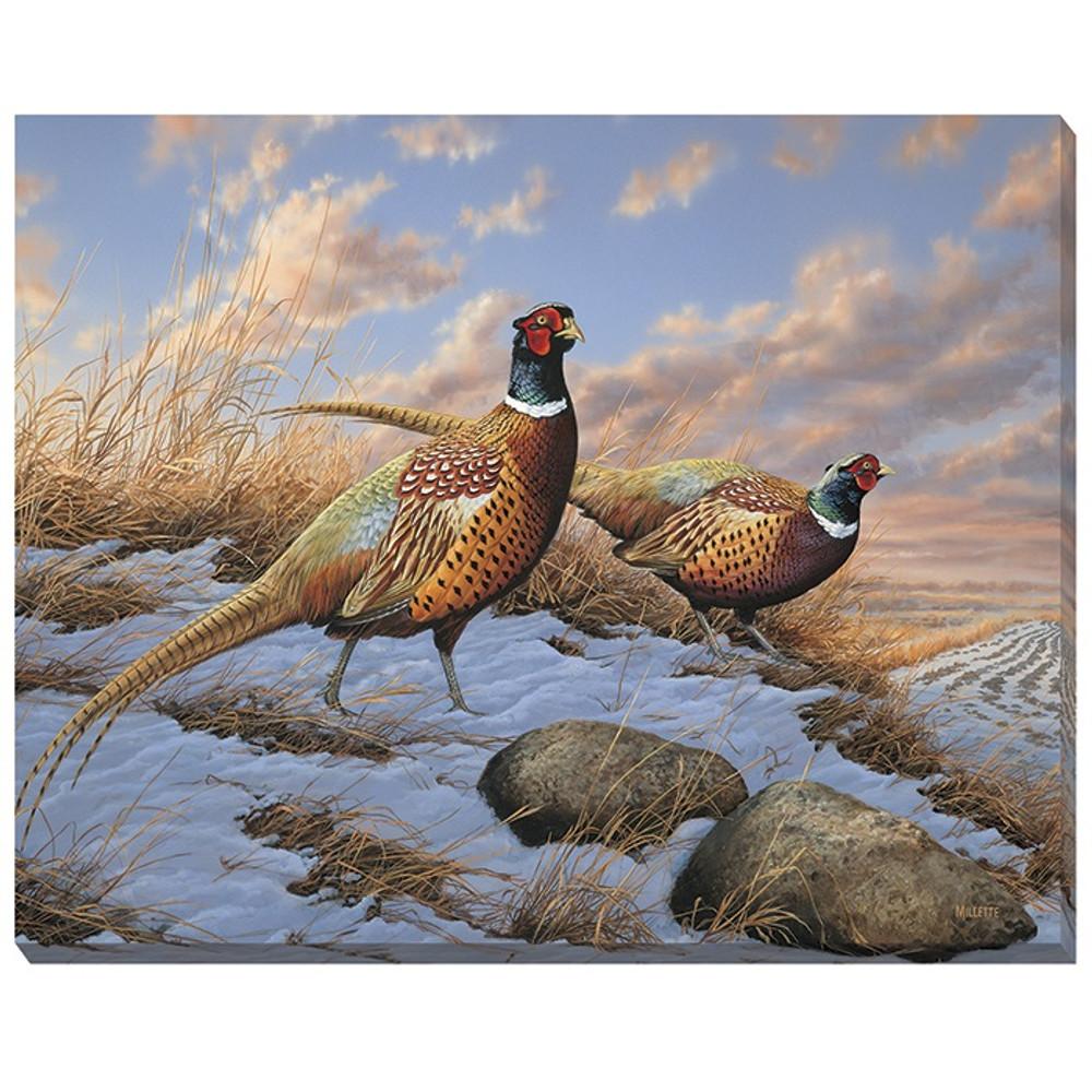 Pheasant Canvas Wall Art | Wild Wings | F593717419