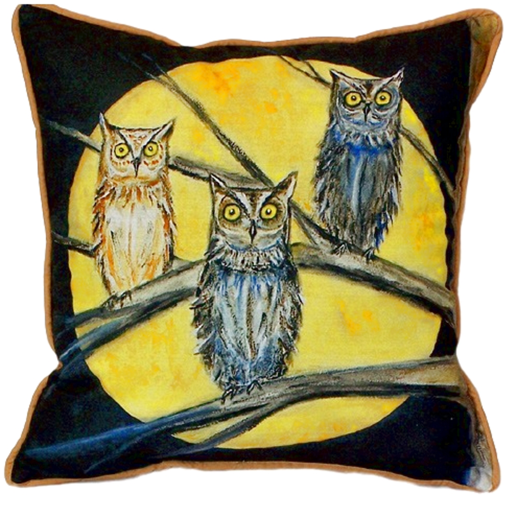Night Owl Indoor Outdoor Pillow 22x22 | Betsy Drake | BDZP248