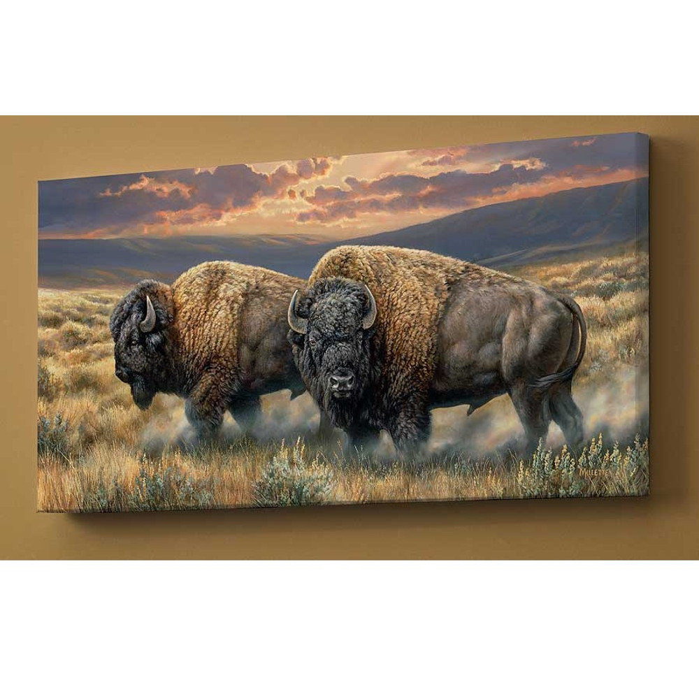 Bison Canvas Wall Art | Wild Wings | F593130569