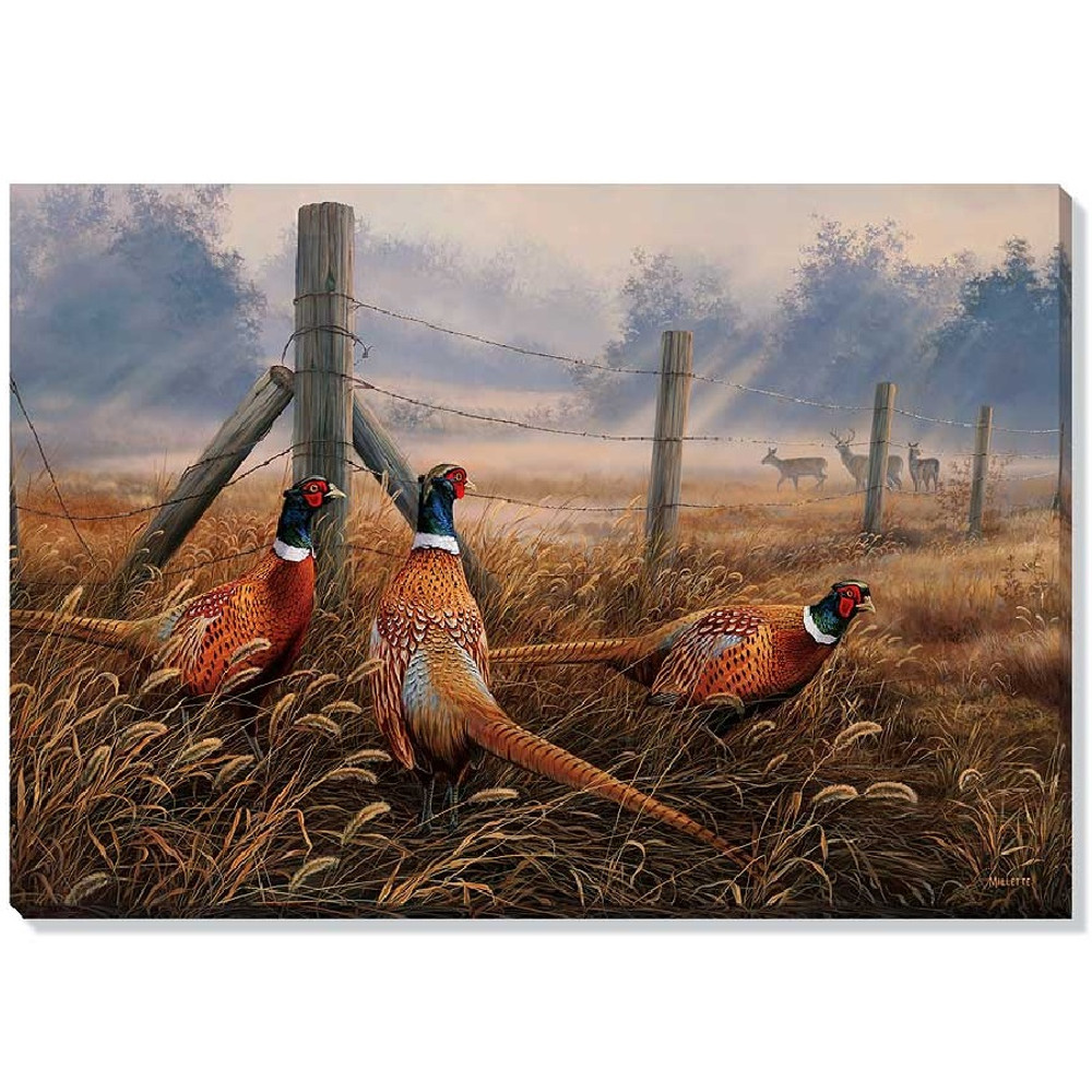 Pheasant Canvas Wall Art | Wild Wings | F593492619