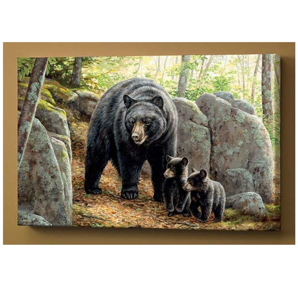 Black Bear Canvas Wall Art   Wild Wings   F593536075