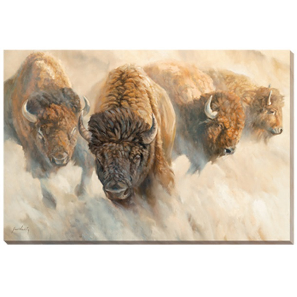 Bison Canvas Wall Art | Wild Wings | F362295469