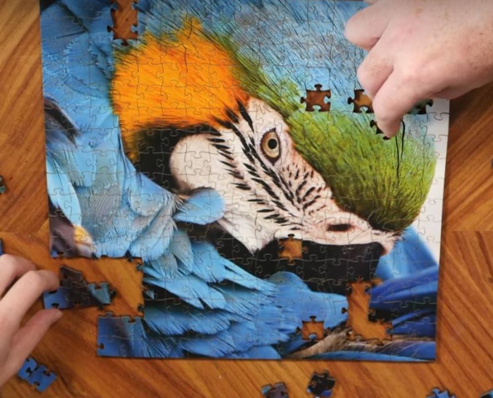 Dolphin Artisanal Wooden Jigsaw Puzzle | Zen Art & Design | ZADDOLPHIN