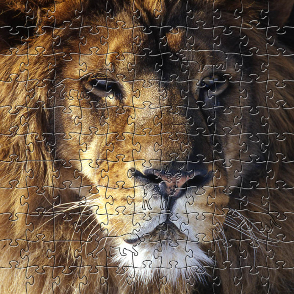 Lion Artisanal Wooden Jigsaw Puzzle | Zen Art & Design | ZADLION