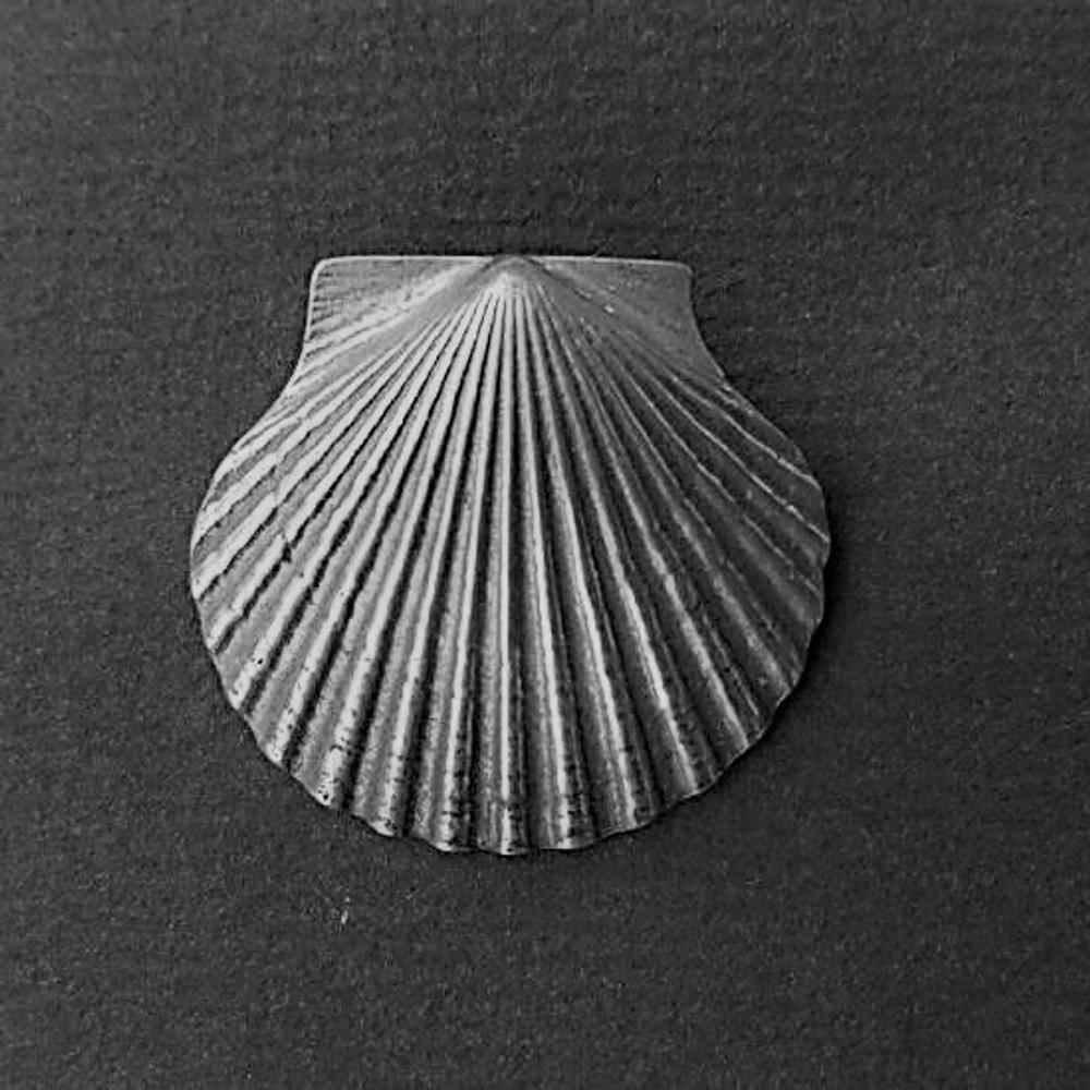 Scallop Shell Large Pin/Pendant