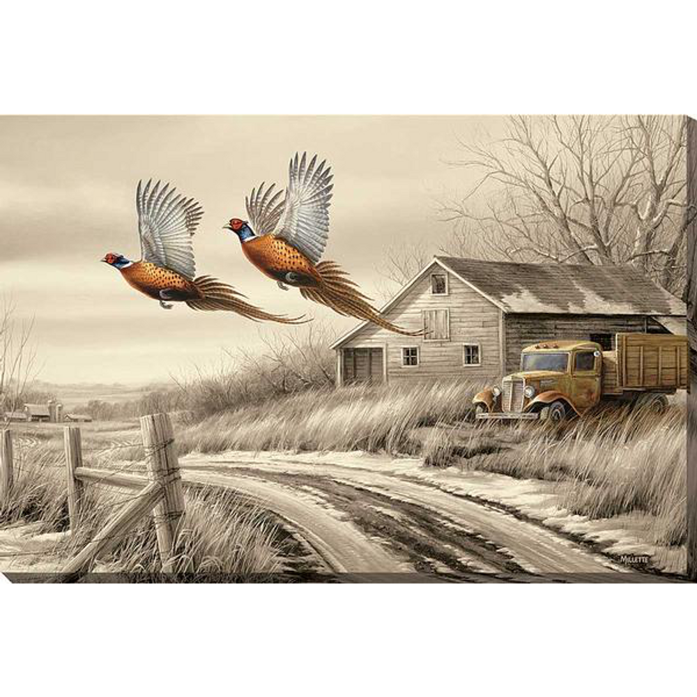 Pheasant Wrapped Canvas Wall Art   Weathered Memories   Wild Wings   F593853419