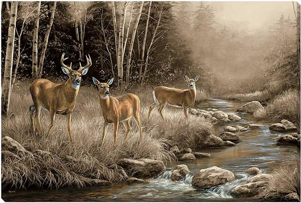 whitetail deer canvas art