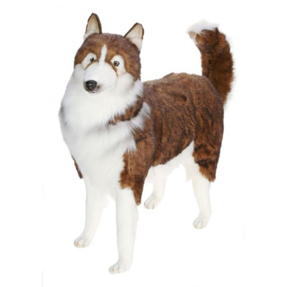 Husky Dog Life-Sized Stuffed Animal | Plush Dog Statue | Hansa Toys | HTU5046