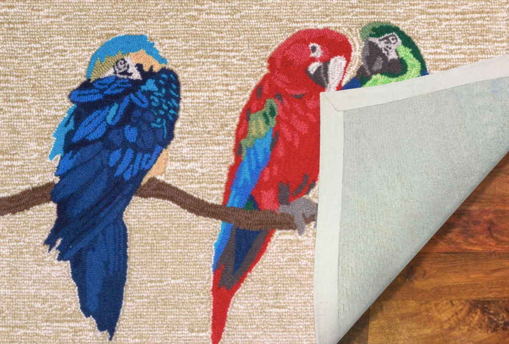 Parrot Bright Area Rug | Trans Ocean | TOGFTP34149244