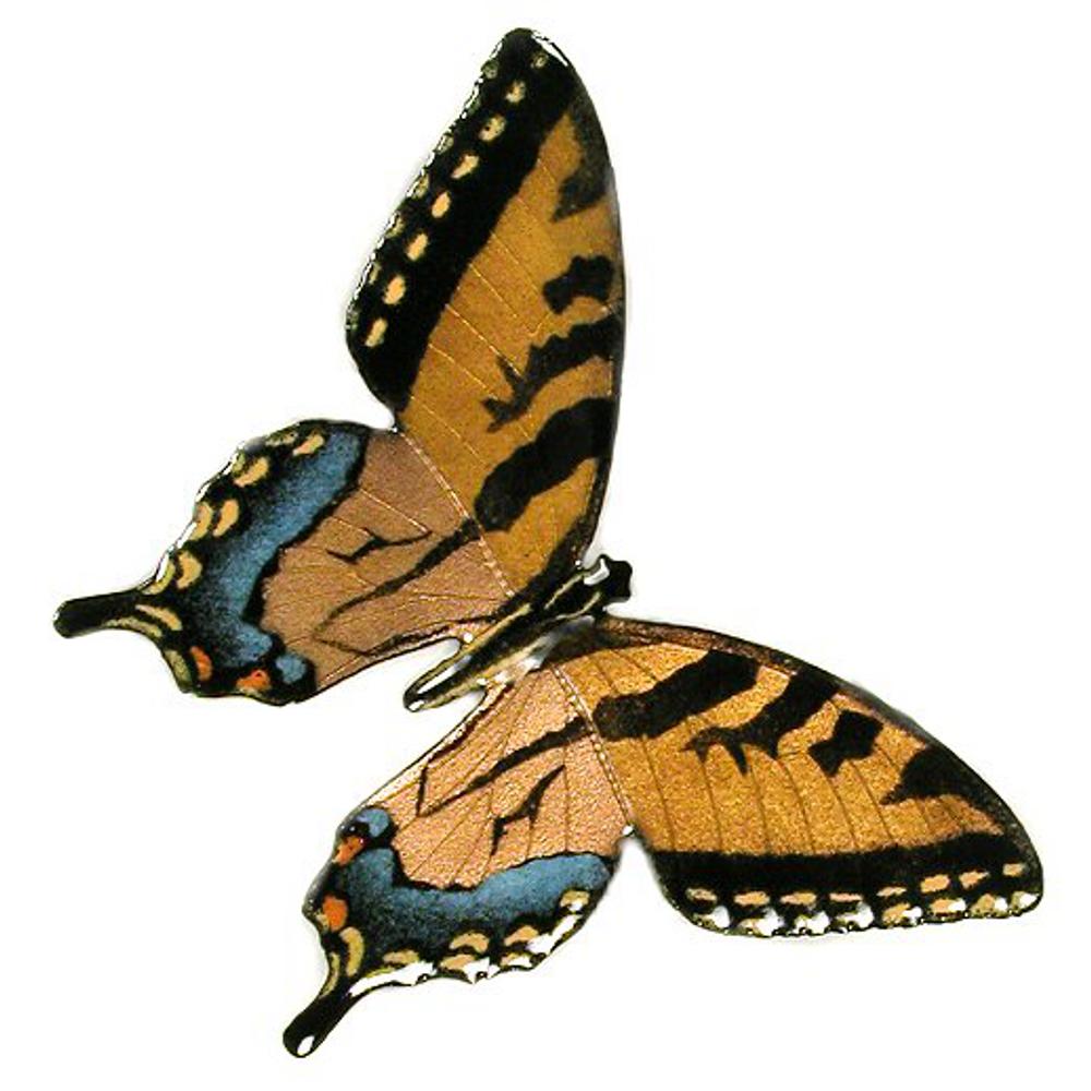 Bovano Tiger Swallowtail Enameled Copper Butterfly Wall Art | B2