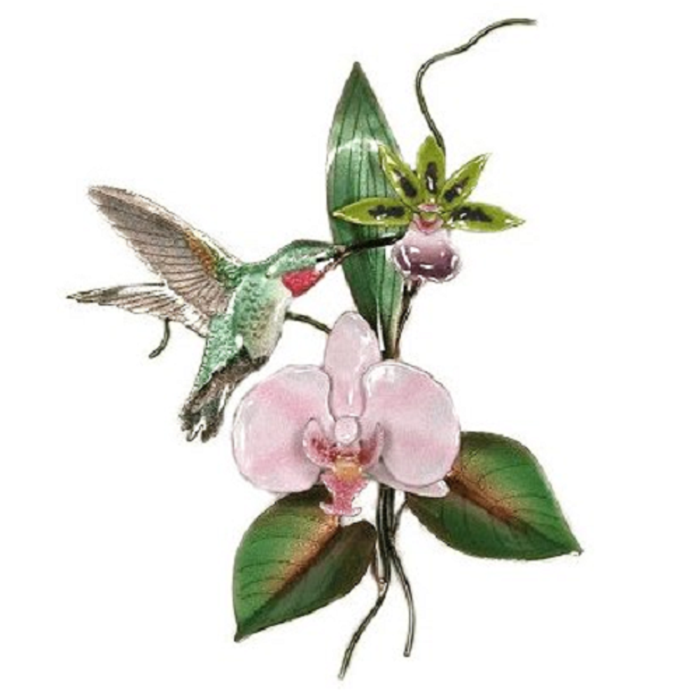 Bovano Broad-tailed Hummingbird with Pink Orchid Wall Art | W4707