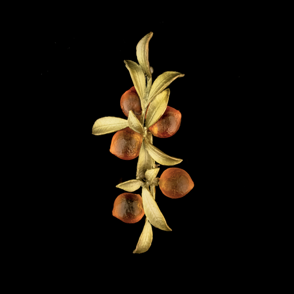 Orange Blossom Leaf Pin | Nature Jewelry | Michael Michaud | 5982BZ