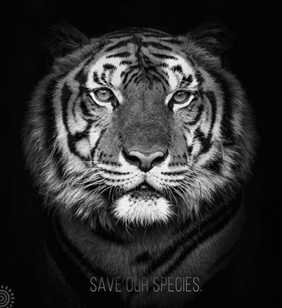 """Tiger 18"""" Tote Bag 