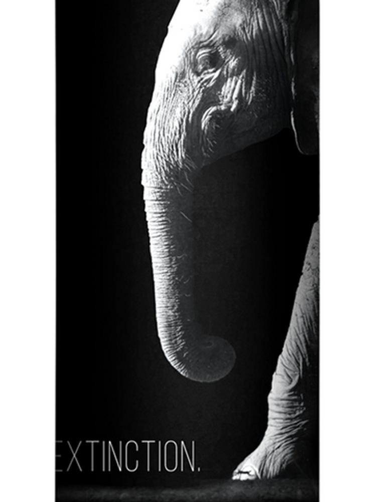 Elephant Stainless Steel 17oz Travel Mug | Stop Extinction | The Mountain | 5959741 | Elephant Travel Mug