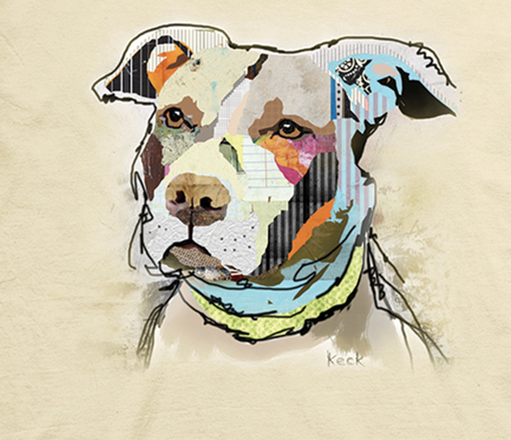 Paper Pitbull Unisex Cotton T-Shirt | The Mountain | 106474 | Pit Bull T-Shirt