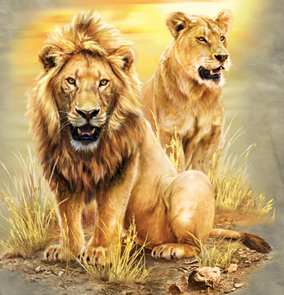 Lion Pair Unisex Cotton T-Shirt | The Mountain | 106317 | Lion T-Shirt