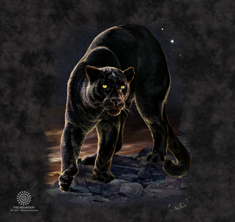 Panther Portrait Stainless Steel 17oz Travel Mug | The Mountain | 5962771 | Black Panther Travel Mug