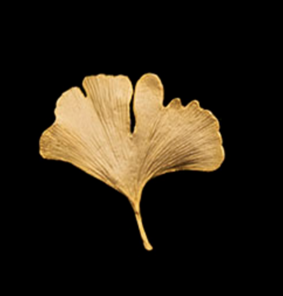 Ginkgo Leaf Gold Pin | Michael Michaud | 5534V | Nature Jewelry