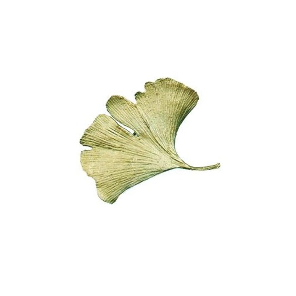 Gingko Pin | Michael Michaud Jewelry | SS5534bz
