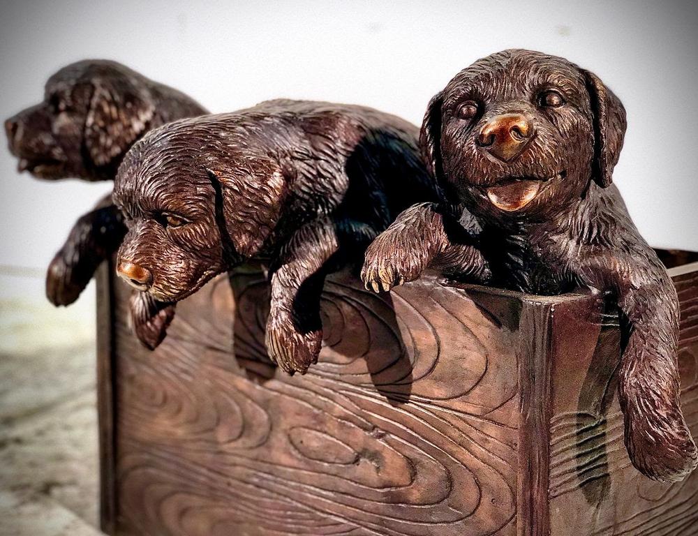 Puppies in a Box Bronze Outdoor Statue   Metropolitan Galleries   SRB25146