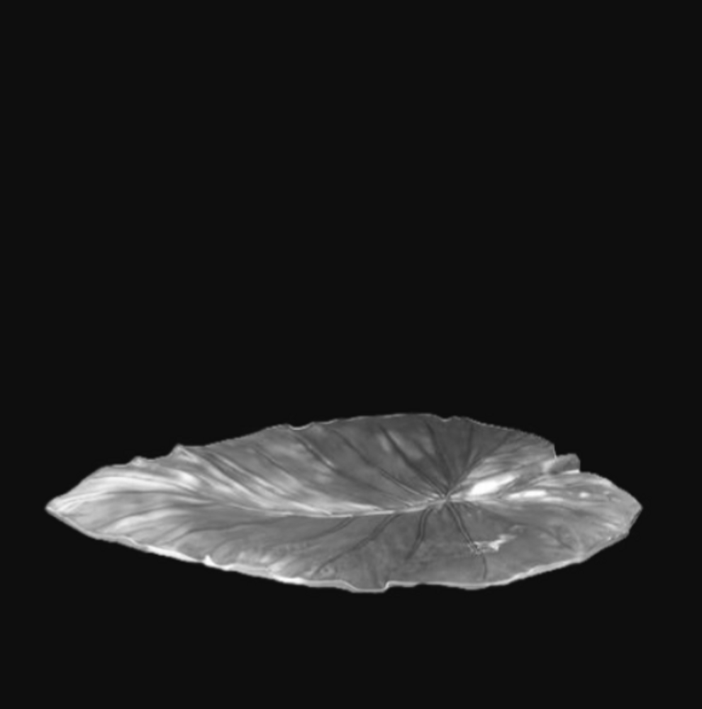 Elephant Ear Large Leaf Silver Plated Centerpiece Bowl | U-49 | D'Argenta