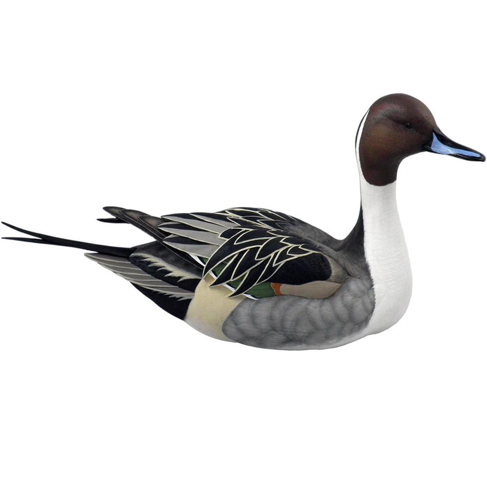 Pintail Duck Sculpture Swan Lake | Loon Lake Decoy | 6538511302