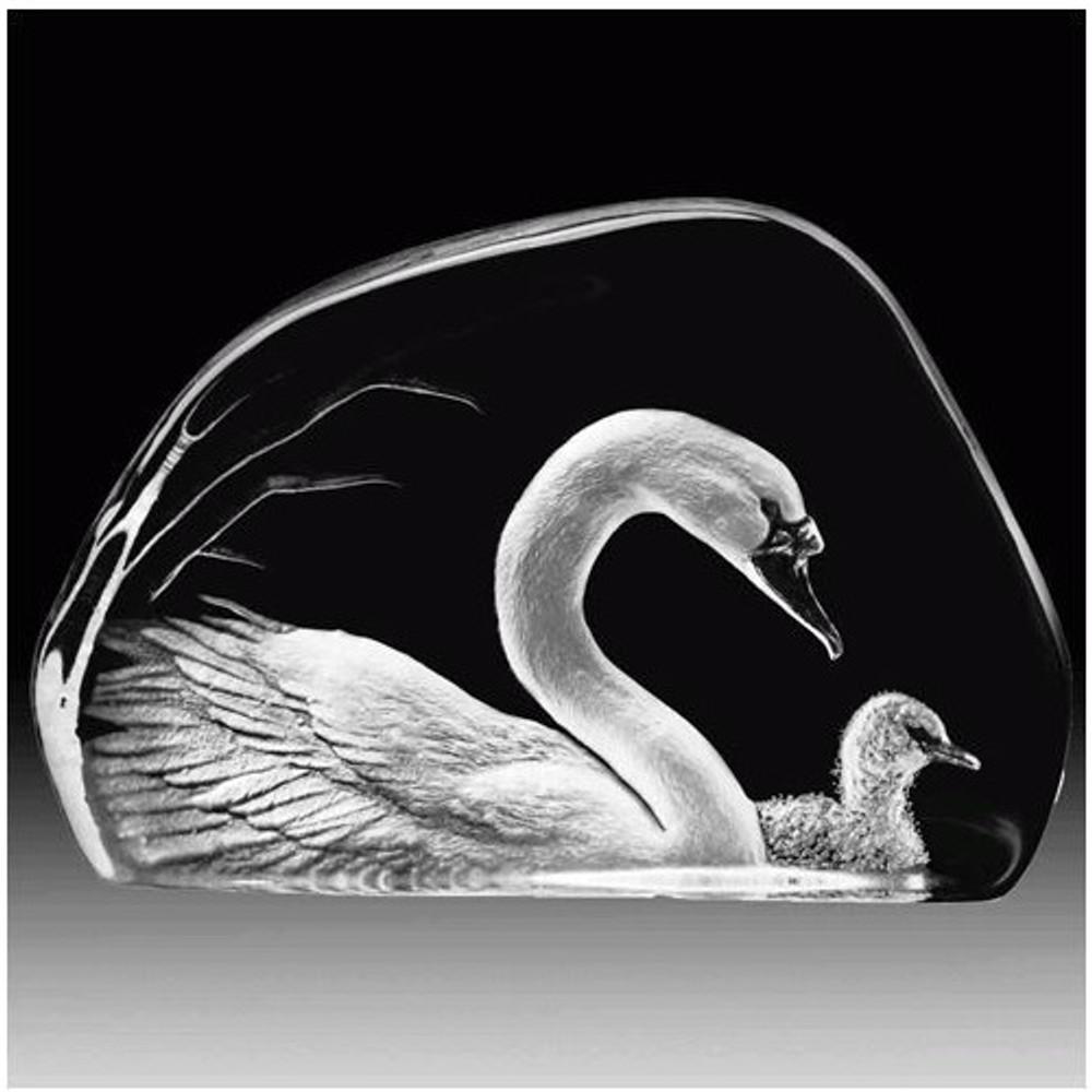 Swan and Baby Crystal Sculpture | 33314 | Mats Jonasson Maleras