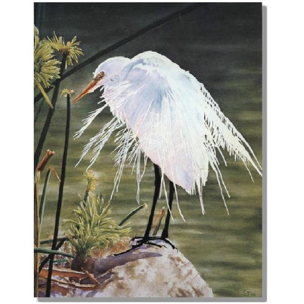 """Egret Print """"A Great Egret""""   Gary Johnson   GJgcagregret"""