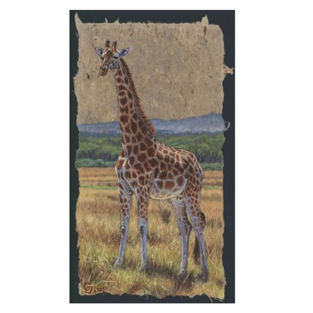 "Giraffe Print ""East African Matriarch"" | Gary Johnson | GJgceafrmat"