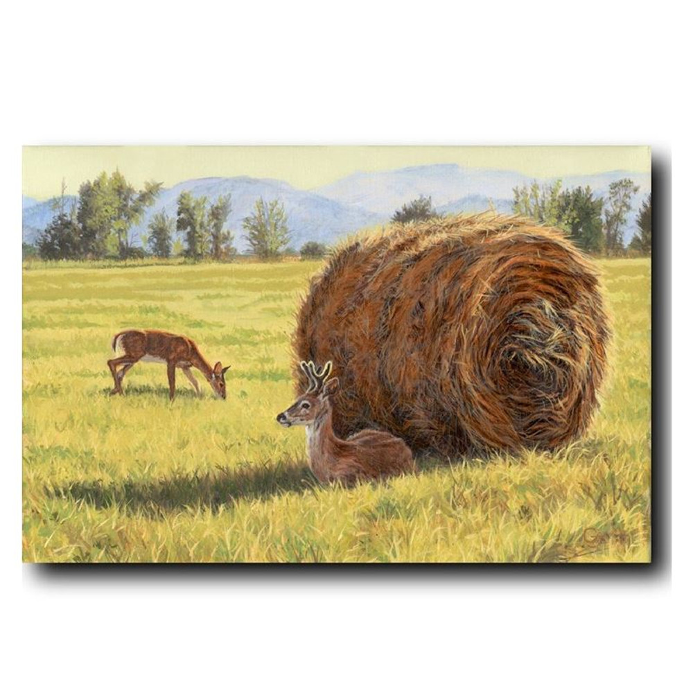 "Deer Print ""Made in the Shade"" | Gary Johnson | GJgcmits"