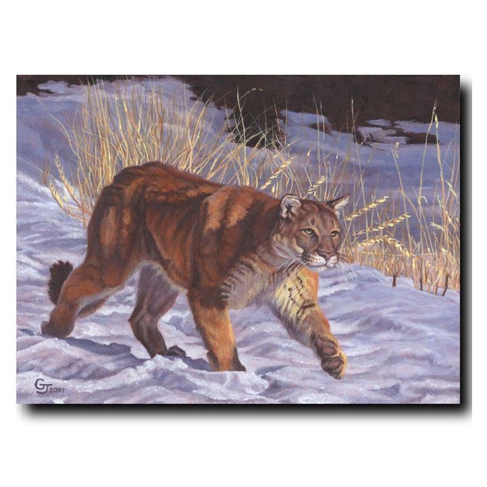 "Cougar Print ""On The Prowl"" 