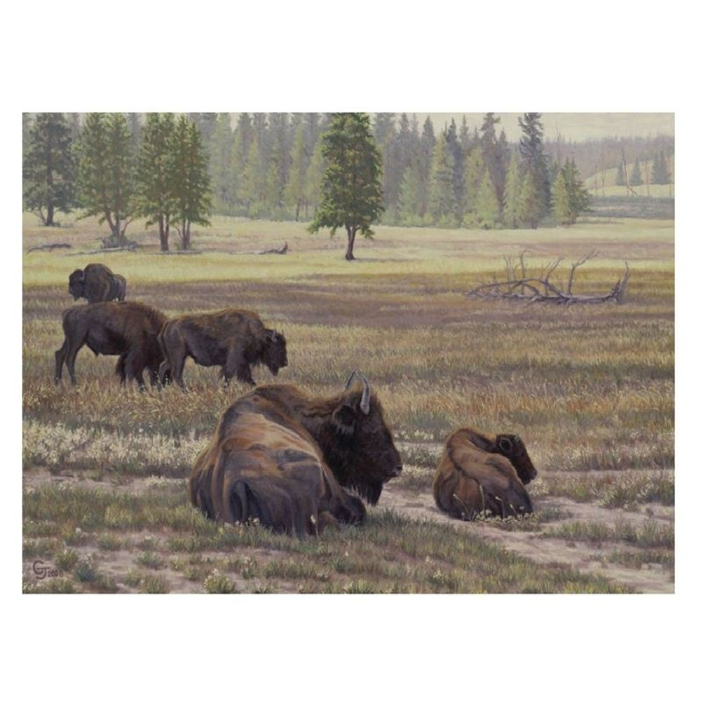 "Bison Print ""Rise and Shine"" 