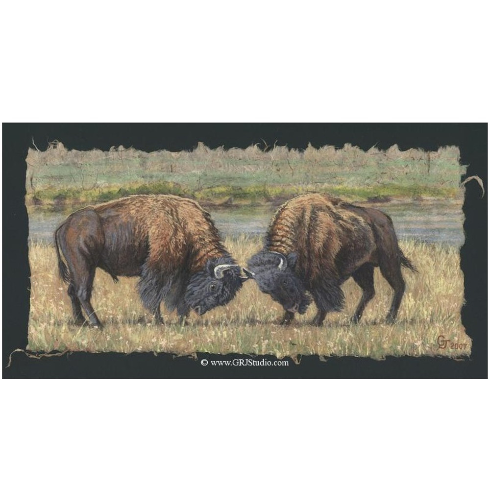 "Bull Print ""Sparring Match"" 