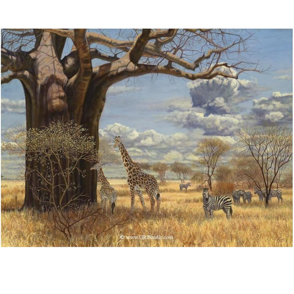 "Giraffe Print ""Under the Baobab Tree"" | Gary Johnson | GJgirbaobab"
