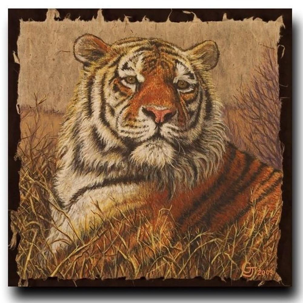 "Tiger Print ""A Regal Bengal"" | Gary Johnson | GJgparb"