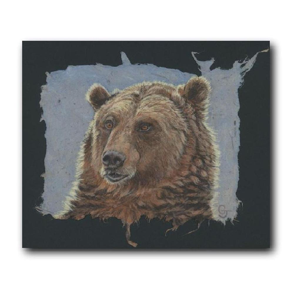 Grizzly Bear Portrait Print   Gary Johnson   GJgpgp