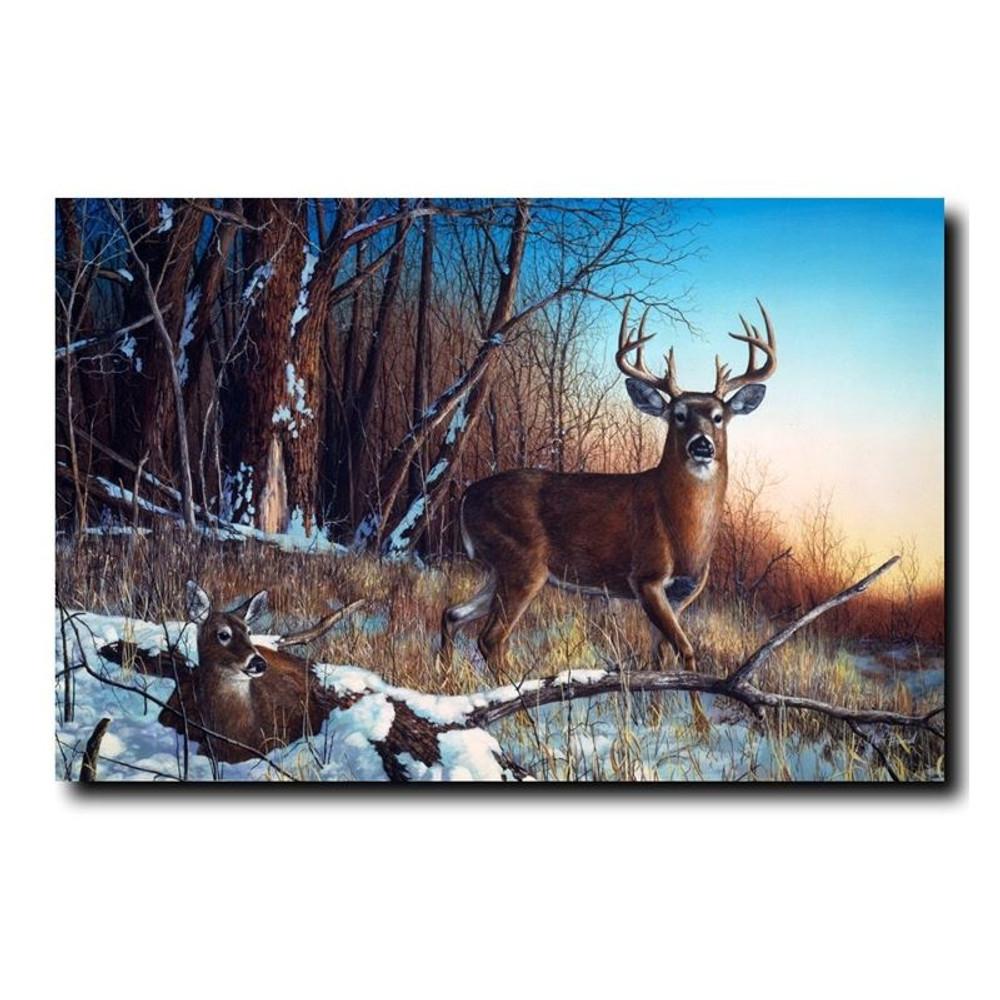 "Deer Print ""Resting Place"" | Jim Hansel | JHrestingplace"