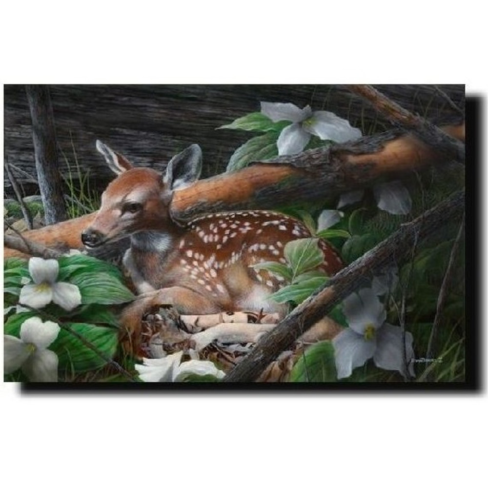 "Deer Print ""Undercover II""   Kevin Daniel   KD001"