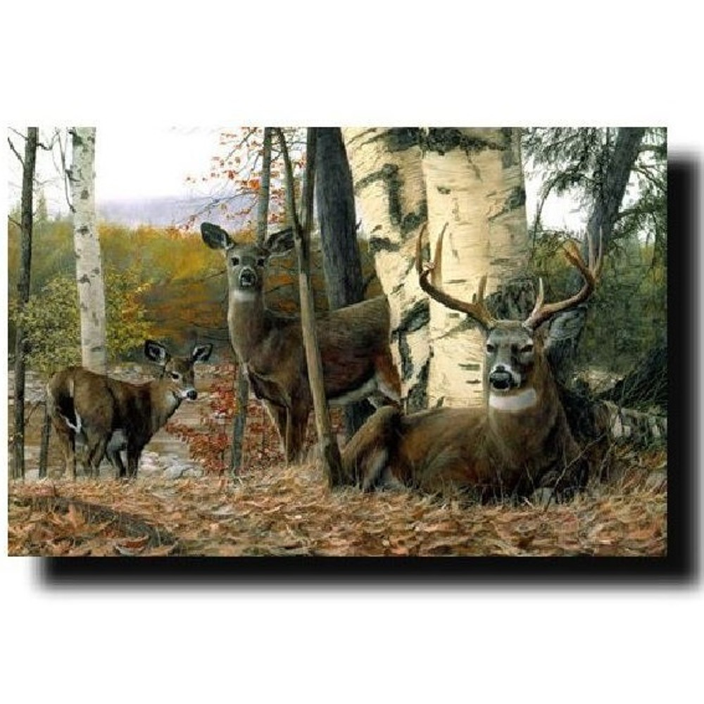 "Deer Print ""Autumn Majesty"" | Kevin Daniel | KD090"