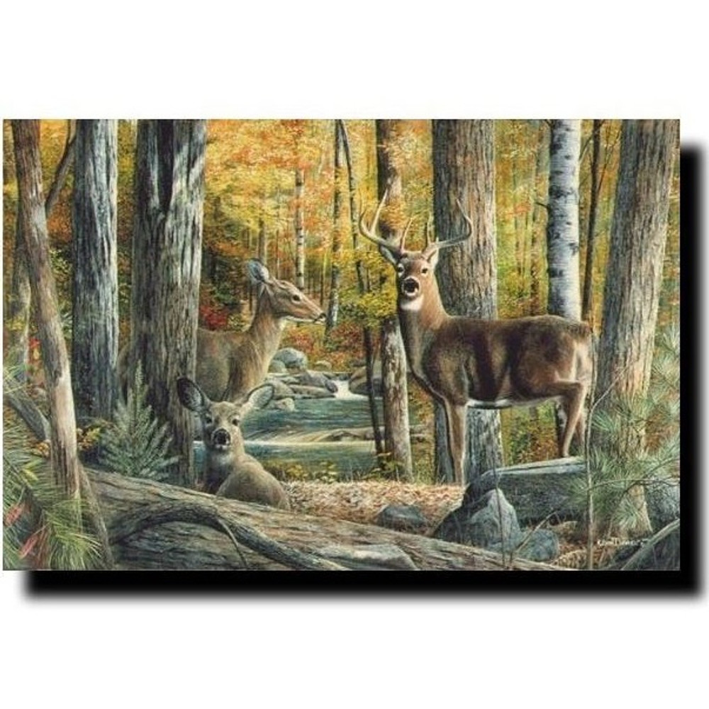 "Deer Print ""Broken Silence II""   Kevin Daniel   KD117"