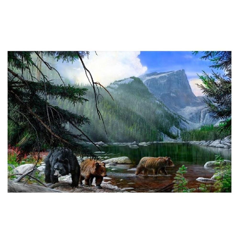 "Bear Print ""Foraging the Shallows"" | Kevin Daniel | KD271"