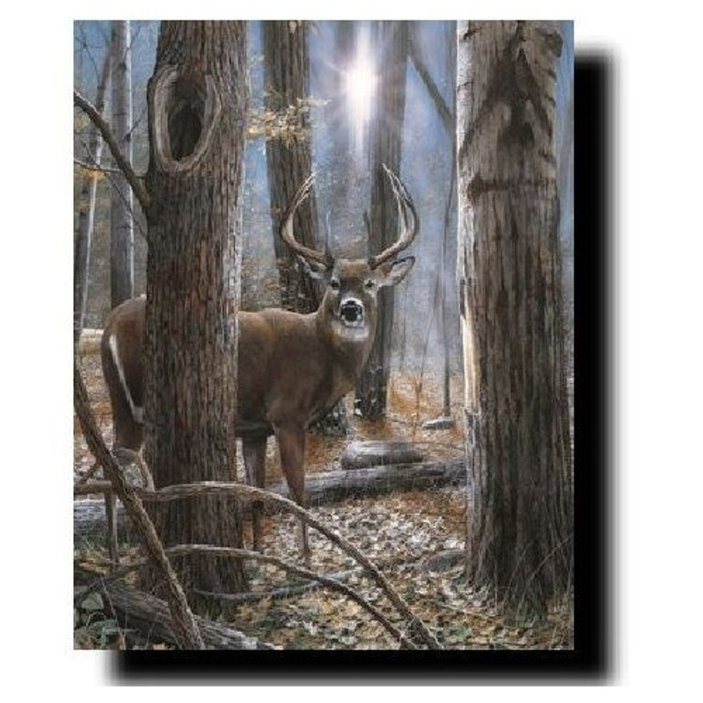 "Deer Buck Print ""Woodland Sentry"" | Kevin Daniel | KD277"