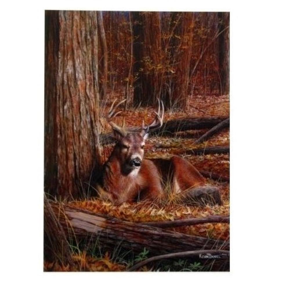 "Deer Print ""Bedding Down""   Kevin Daniel   KD323"