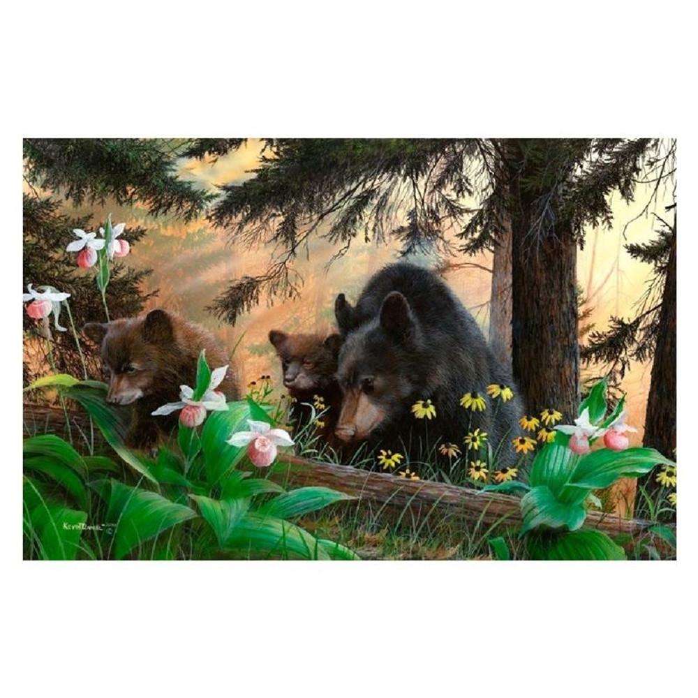 "Bear Print ""Pride and Joy"" | Kevin Daniel | KD444"
