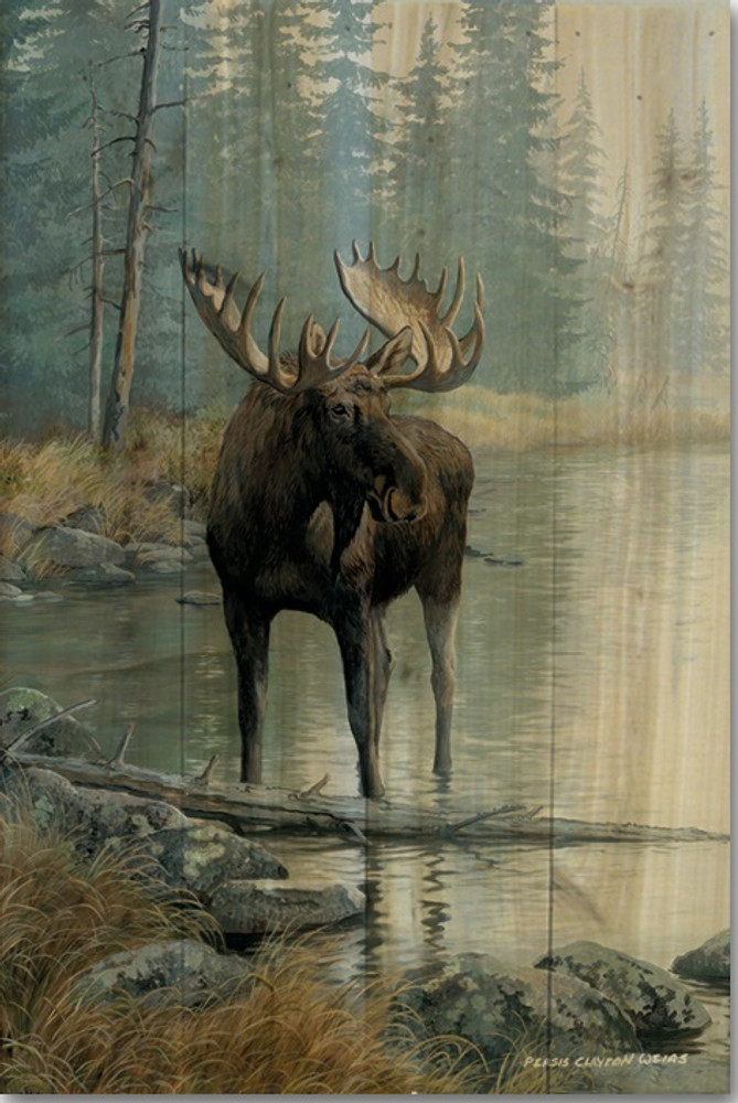 "Moose Wood Wall Art ""Quiet Water"" 