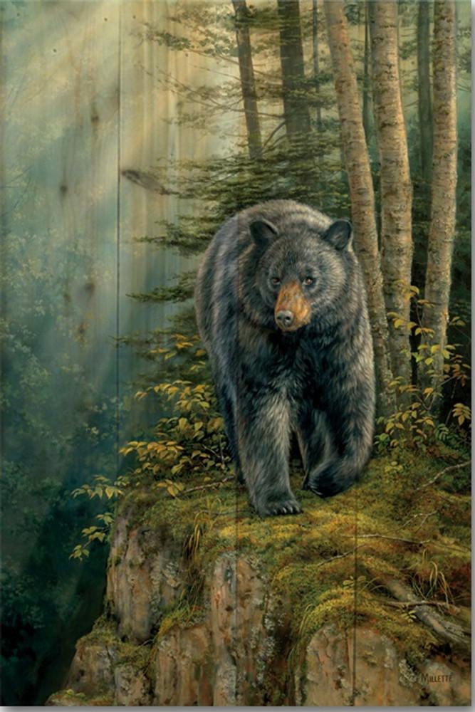 "Bear Wood Wall Art ""Rocky Outcrop"" | Wood Graphixs | WGIROB1624"